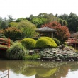 taawoomba the garden city